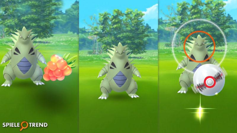 Despotar in Pokémon GO fangen