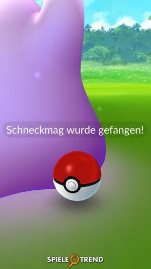 Lustiger Ditto Bug in Pokémon GO