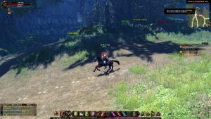 Mit dem Pferd durch Chantra