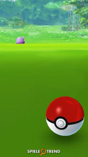 Ditto Pokémon GO selten