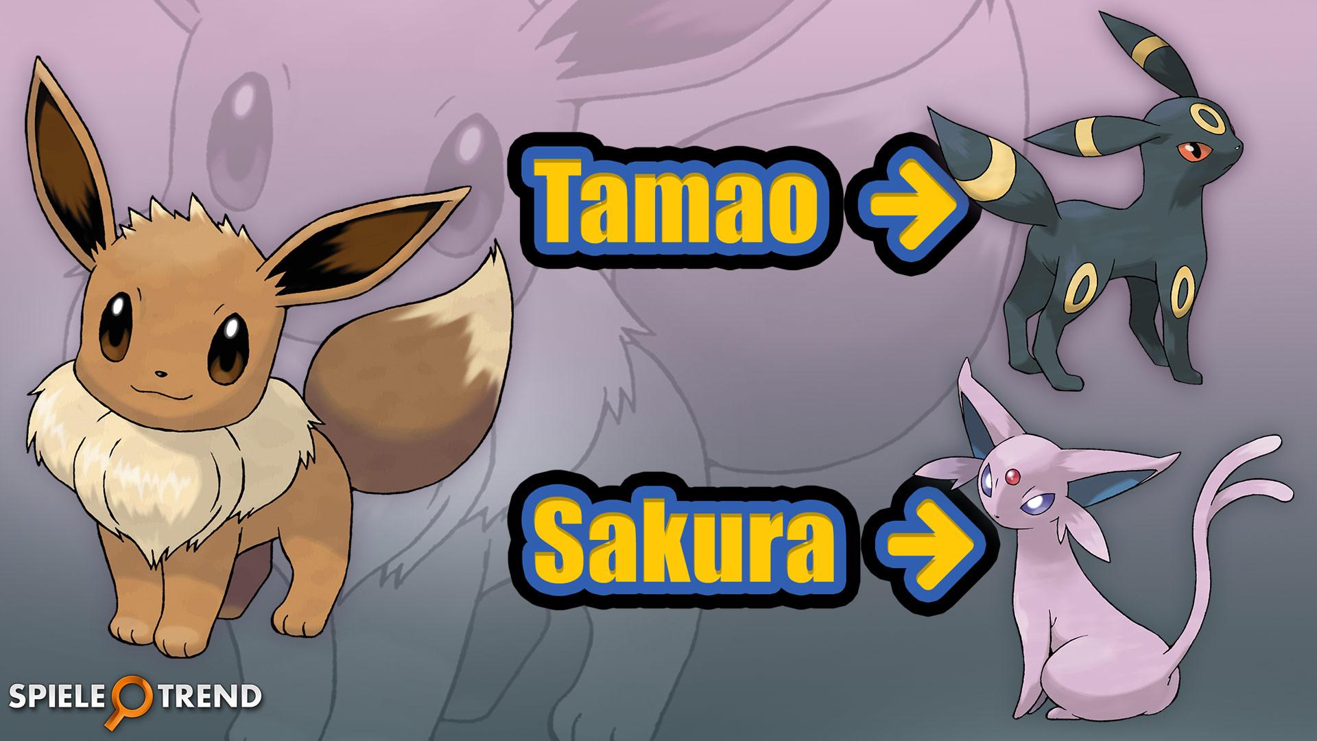 Pok mon go evoli trick f r nachtara psiana spieletrend - Pokemon noir 2 evoli ...