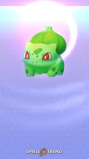 Pokémon GO Shiny Bisasam