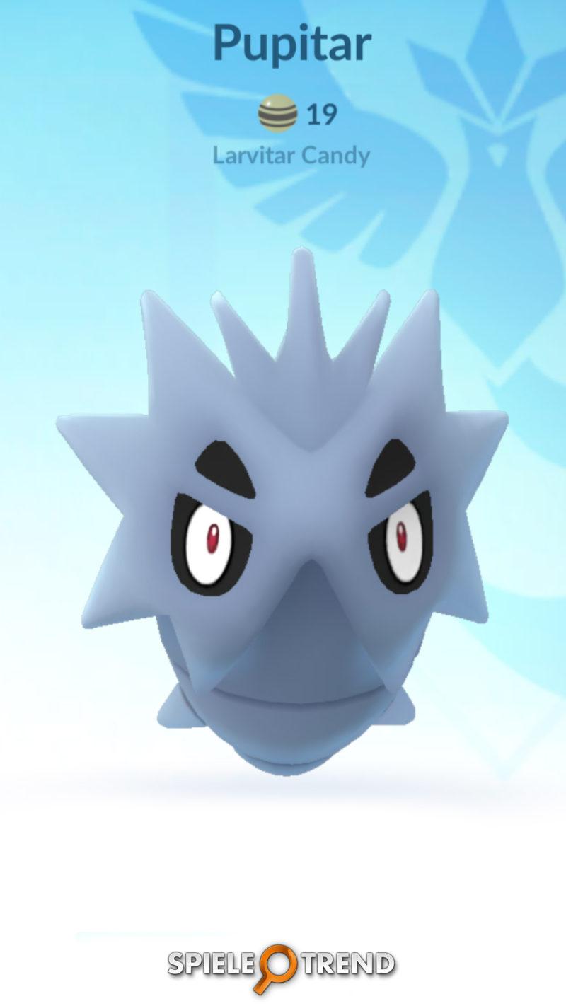 Pupitar Buddy Pokémon
