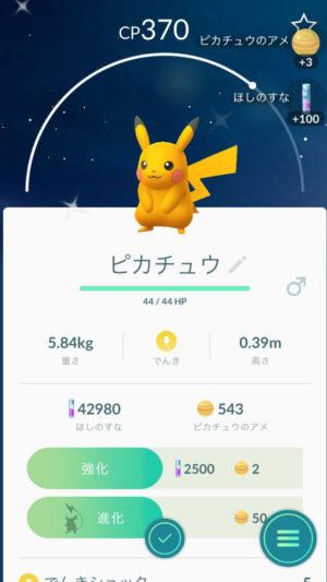 Schillerndes Pikachu