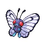 Pokémon Pokédex Nummer 12 Smettbo