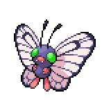 Pokémon Pokédex Nummer 12 Smettbo Shiny