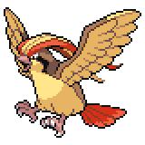 Pokémon Pokédex Nummer 18 Tauboss
