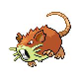 Pokémon Pokédex Nummer 20 Rattikarl Shiny