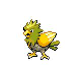 Pokémon Pokédex Nummer 21 Habitak Shiny