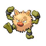 Pokémon Pokédex Nummer 57 Rasaff Shiny