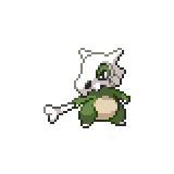Pokémon Pokédex Nummer 104 Tragosso Shiny
