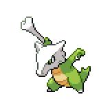 Pokémon Pokédex Nummer 105 Knogga Shiny