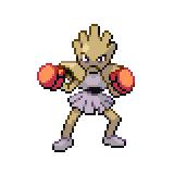 Pokémon Pokédex Nummer 107 Nockchan