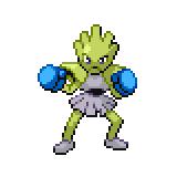 Pokémon Pokédex Nummer 107 Nockchan Shiny