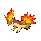 Pokémon Pokédex Nummer 156 Igelavar Shiny