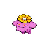 Pokémon Pokédex Nummer 188 Hubelupf Shiny