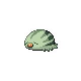 Pokémon Pokédex Nummer 220 Quiekel Shiny